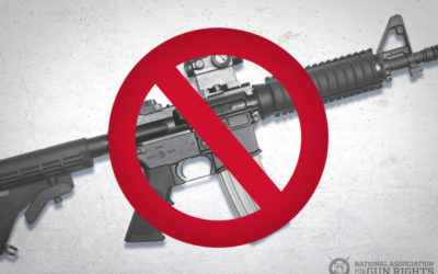 """Democrats Want to Ban More Than Just """"Assault Weapons"""""""