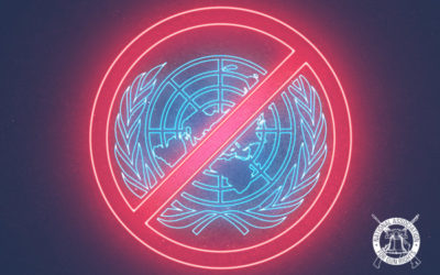 "UN ""Small Arms Treaty"" Status Update"
